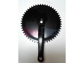 Plato biela para bici spinning Salter M-744