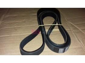 Correa elíptica Body Charger GB9000