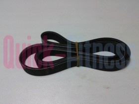 Correa para bici estática DKN EB-2101i / 2100